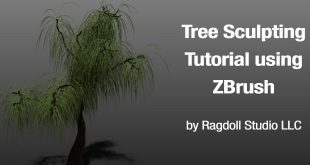 Tree Sculpting Tutorial using ZBrush by Ragdoll Studio LLC